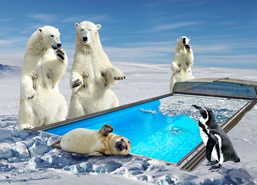 Pool winterfest